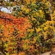 Hiking In Autumn Art Print
