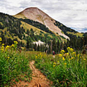 Hiking In La Sal Art Print