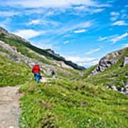 Hiking On Savage River Trail In Denali Np-ak    Art Print