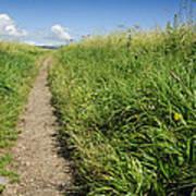 Hiking Path In Devon England Art Print