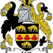 Hill Coat Of Arms II Irish Art Print