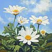 Hills And White Daisies Art Print by James Derieg
