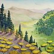 Hillside Of Yarrow Flowers With Pine Tress Art Print