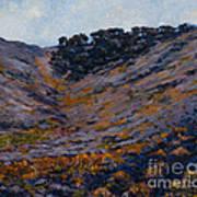 Hillside Sage Art Print