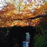 Hillwood Mansion Fall Garden Art Print