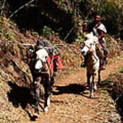 Himalayan Horseman - Nepal Art Print