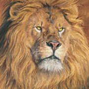 His Majesty - Detail Art Print