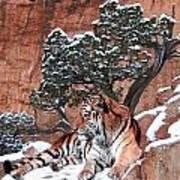 His Mountain Art Print