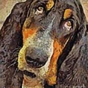 His Soft Sad Look Art Print