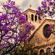 Historic Sierra Madre Congregational Church Among The Purple Jacaranda Trees  Art Print