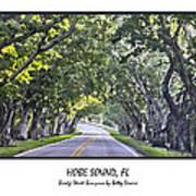 Hobe Sound Fl-bridge Street Banyans Art Print