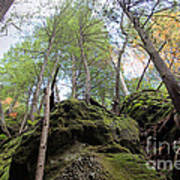 Hocking Hills Moss Covered Cliff Art Print