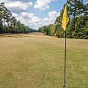 Hole Flag At A Golf Course Art Print