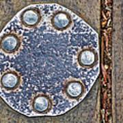 Hole Patch 2 John Muir Woods Art Print