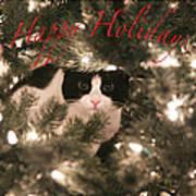Holiday Card Art Print