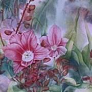 Holland Blooms Art Print