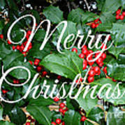 Holly Berries Merry Christmas Art Print