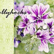 Hollyhocks Art Print