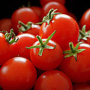 Homegrown Tomatoes Art Print