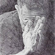 Homo Sapiens II Art Print by Mike Walrath