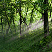 Hope Lights Eternal - Blue Ridge Parkway I Art Print