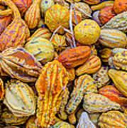 Hordes Of Gourds Art Print