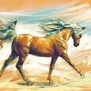 Horse Akalteke Art Print
