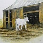 Horse And Barn Art Print by Bertie Edwards