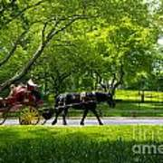 Horse And Carriage Central Park Art Print