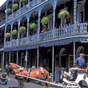 Horse And Carriage In New Orleans Art Print