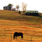 Horse And Farm By Jan Marvin Art Print