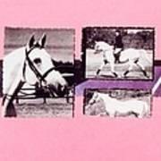 Horse And Rider C Art Print