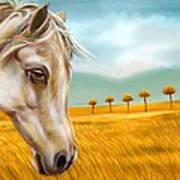 Horse At Yellow Paddy Field Art Print