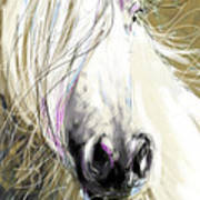 Horse Blowing In The Wind Art Print