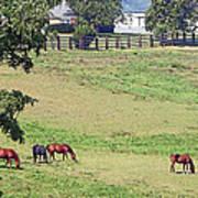 Horse Country Art Print