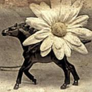 Horse Dream Art Print