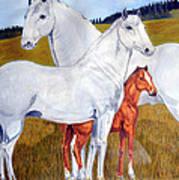Horse Family Art Print