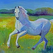 Horse Fancy Art Print by Gwen Carroll