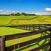 Horse Farm Fences Art Print