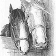 Horse Friends Pencil_portrait Art Print
