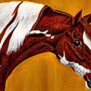 Horse Head Study Art Print by Joy Reese