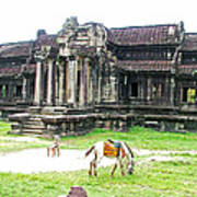 Horse In Front Of Outer Building In Angkor Wat In Angkin Angkor Wat Archeological Park-cambodia Art Print