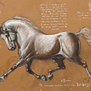 Horse Is Beautiful # 4 Art Print