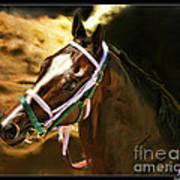 Horse Last Memories Art Print