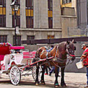 Horse Needs Water In Old Montreal-quebec-canada Art Print