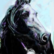 Horse Painted Black Art Print