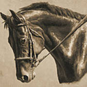 Horse Painting - Focus In Sepia Art Print by Crista Forest
