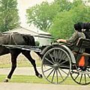 Horse Powered Transportation Art Print