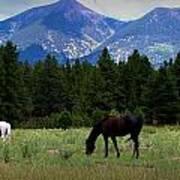 Horse Ranch Below The Peaks Art Print