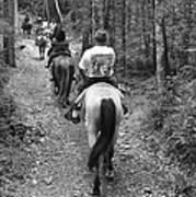 Horse Trail Art Print